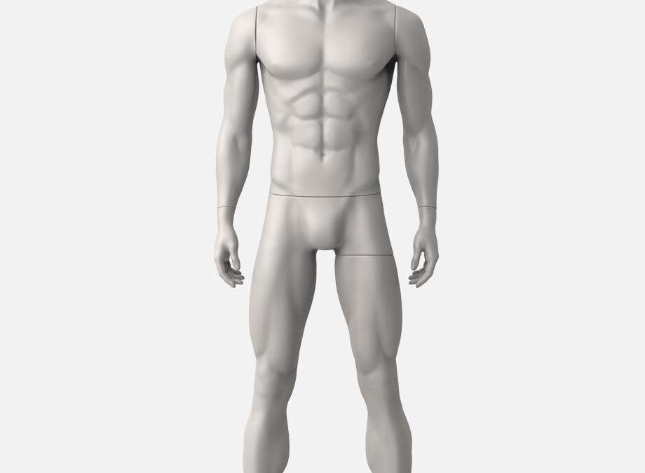 male sport mannequin