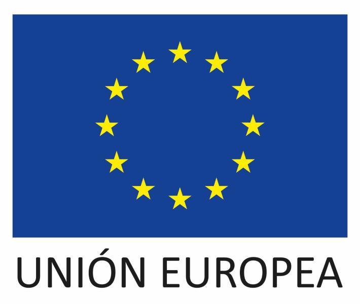 logo FEDER 1