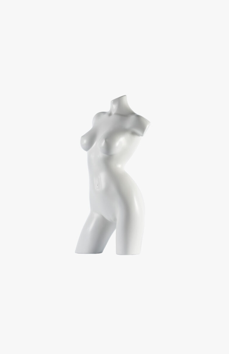 Female torso – Contours