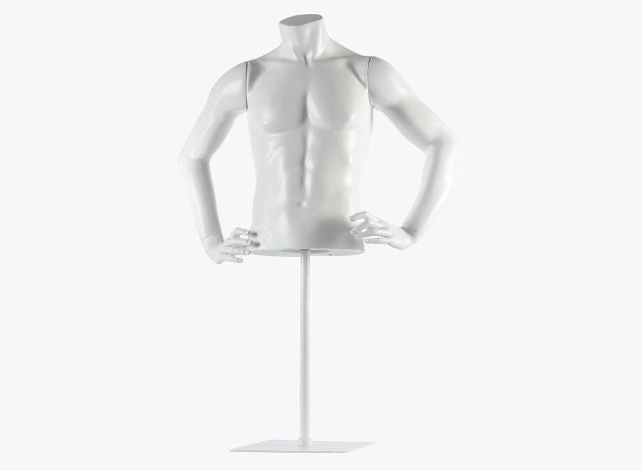 Male torso – Fred 5