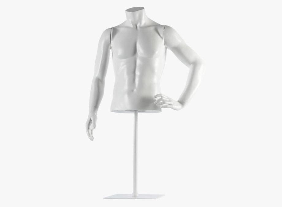Male torso – Fred 7