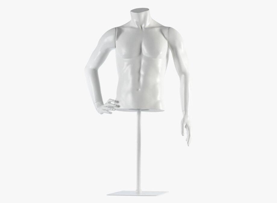 Male torso – Fred 6