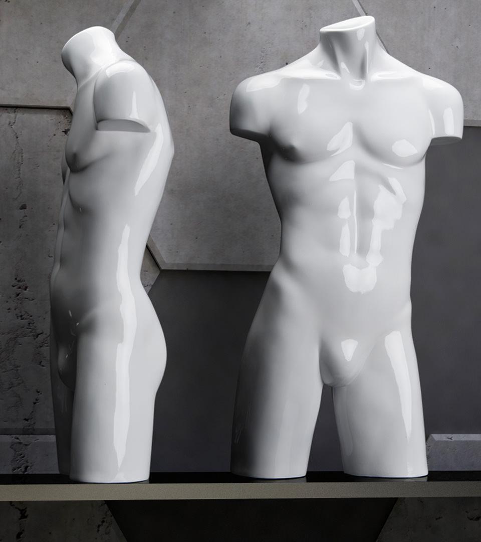 Torsos mannequin male