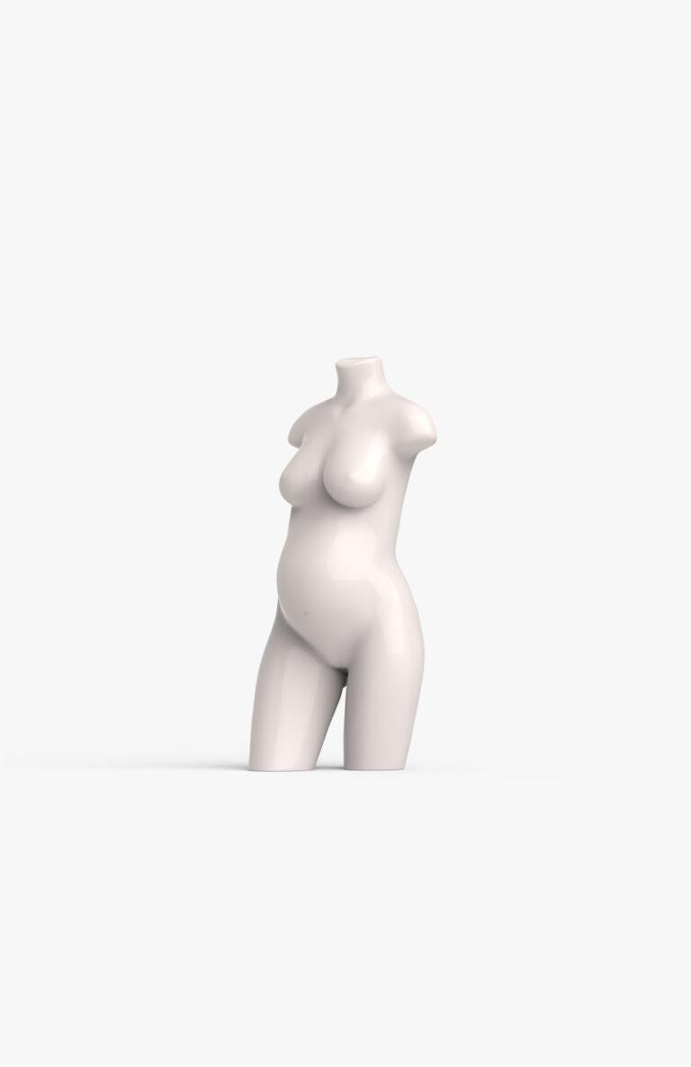 Pregnant torso